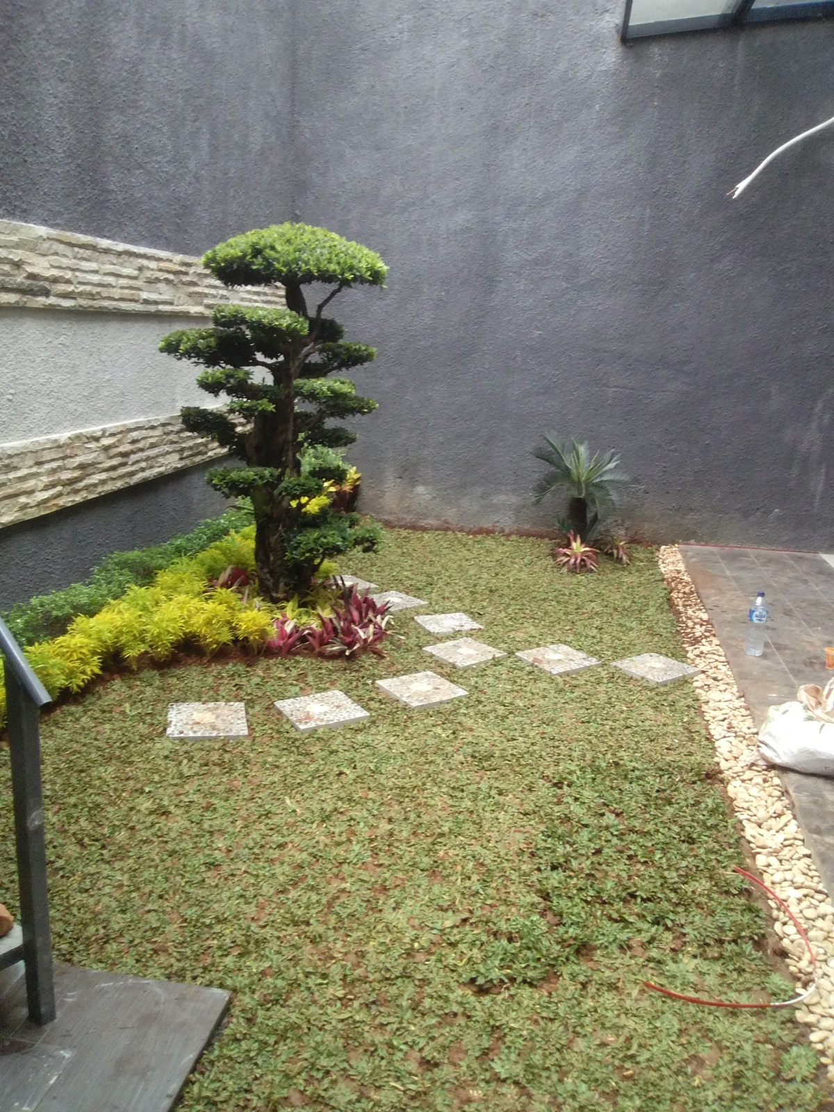 Tukang taman semanggi081297679846